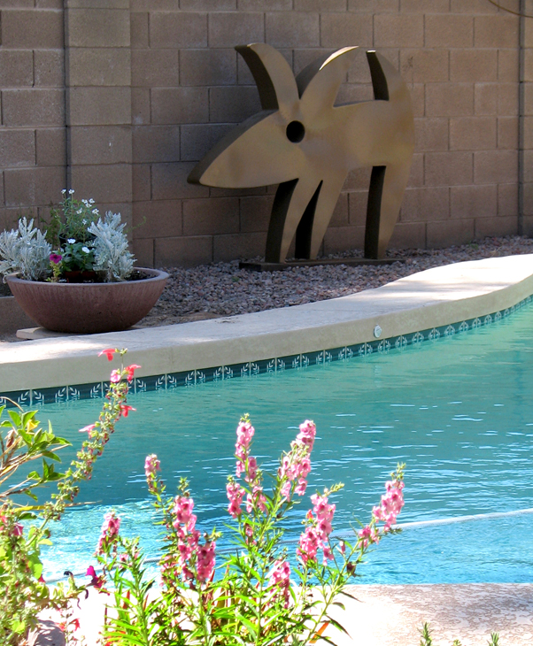 Spot relocates poolside for summer.      ©Joan Waters 2009